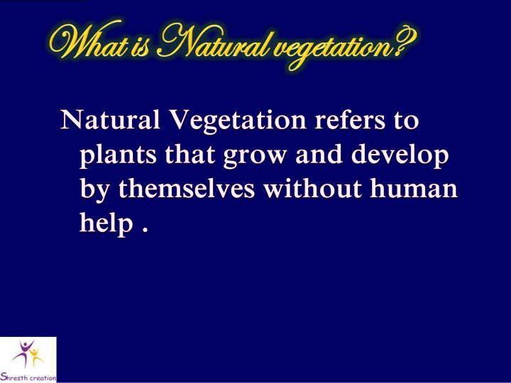 What is Natural vegetation?