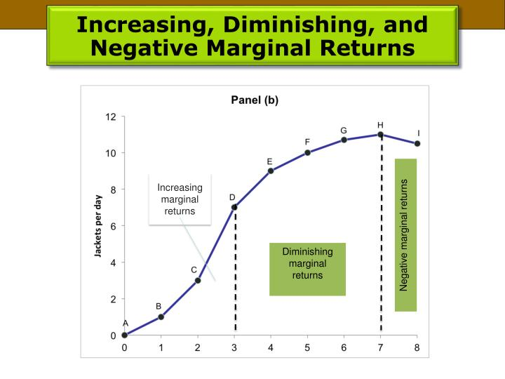 Increasing, Diminishing, and Negative Marginal Returns