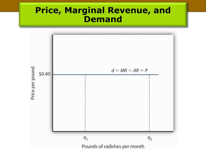 Price, Marginal Revenue, and Demand