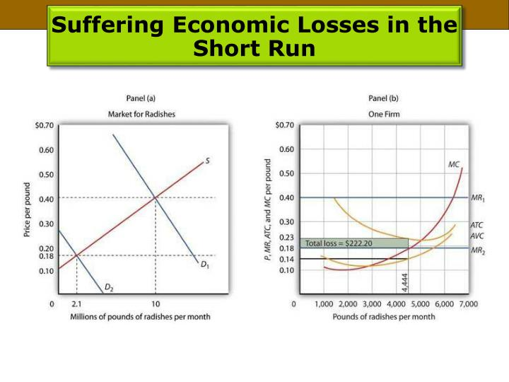 Suffering Economic Losses in the Short Run