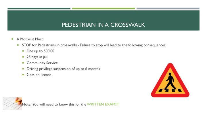 Pedestrian in a crosswalk