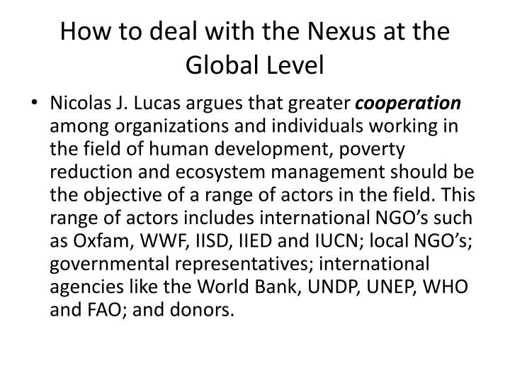 How to deal with the Nexus at the Global Level