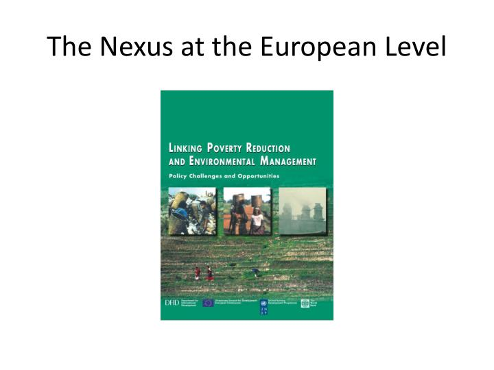 The Nexus at the European Level