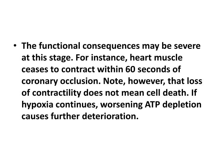 The functional consequences may be severe at this stage. For instance, heart muscle ceases to contract within 60 seconds of coronary occlusion. Note, however, that loss of contractility does not mean cell death. If hypoxia continues, worsening ATP depletion causes further deterioration.