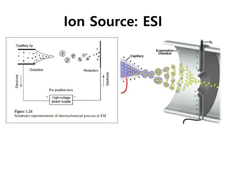 Ion Source: ESI
