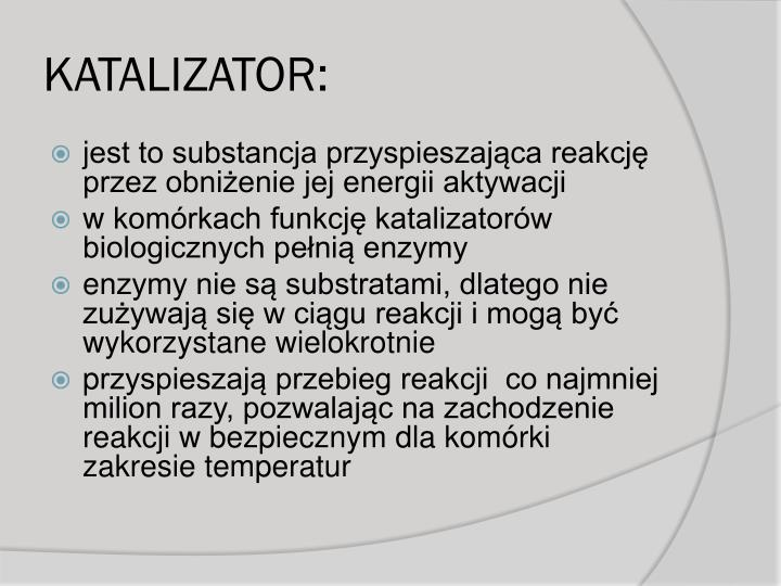 KATALIZATOR: