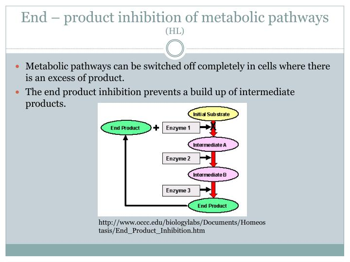 End – product inhibition of metabolic pathways
