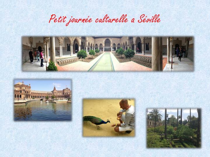 Petit journée culturelle a Séville