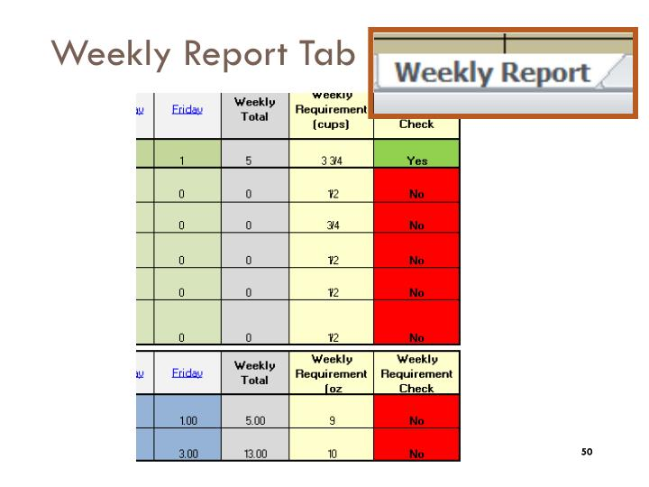 Weekly Report Tab