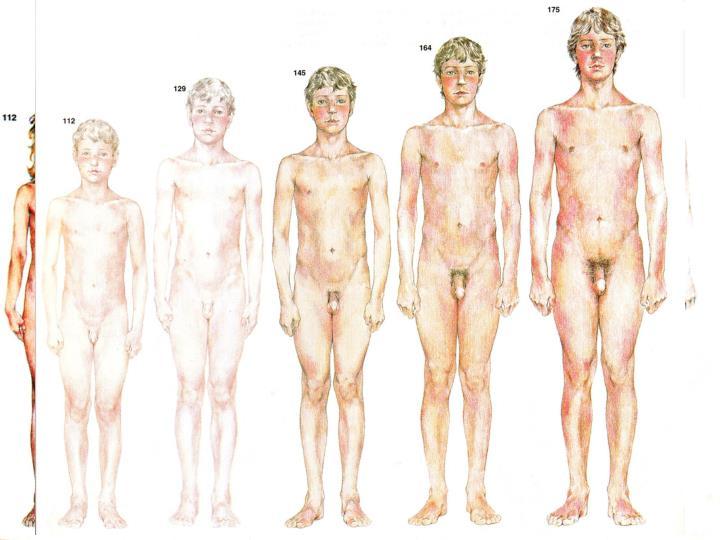 Školní věk  6 – 15 let