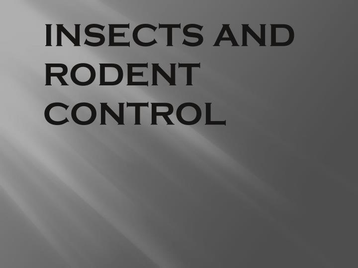 INSECTS AND RODENT CONTROL
