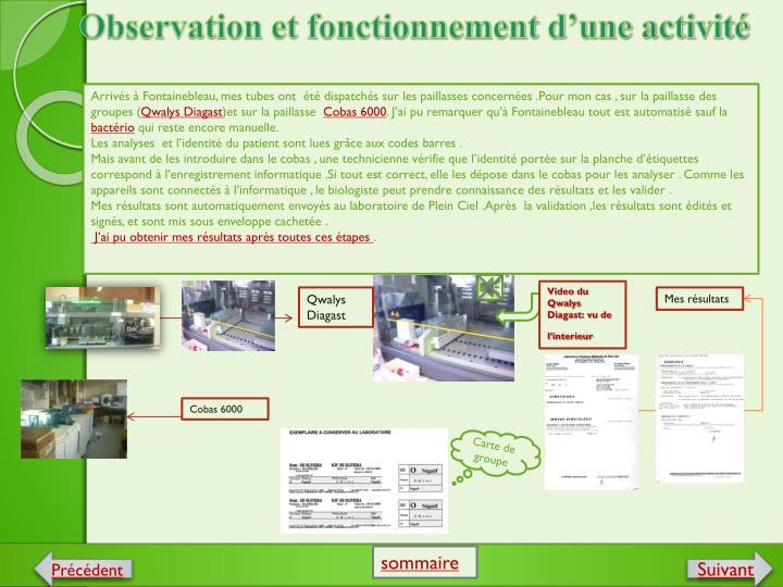 Observation et fonctionnement d'une activité