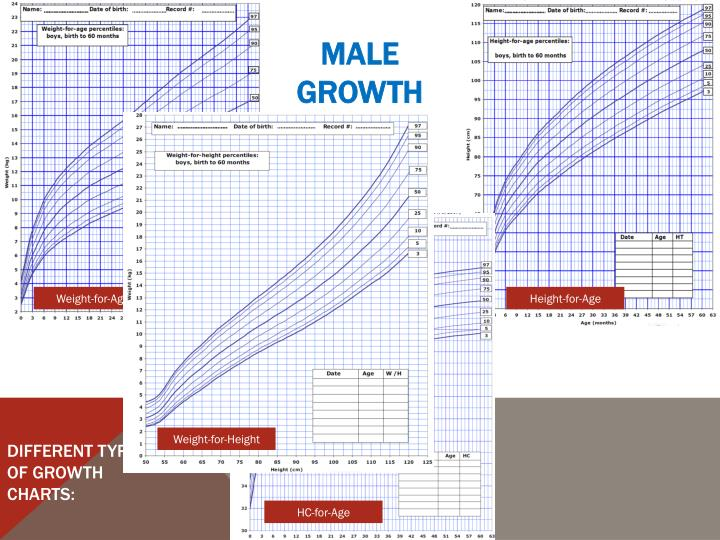 Different Types of Growth Charts: