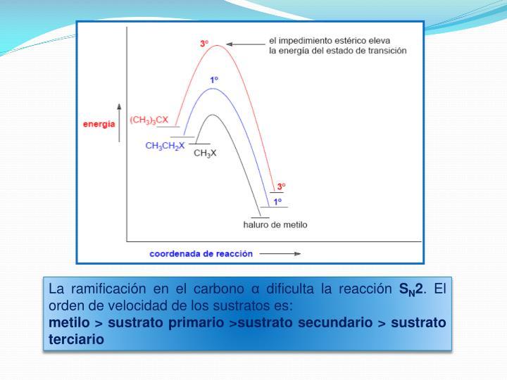 La ramificación en el carbono α dificulta la reacción