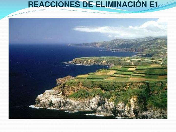 REACCIONES DE ELIMINACIÓN E1