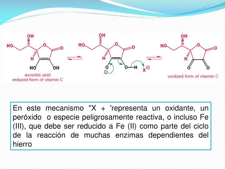 """En este mecanismo """"X + 'representa un oxidante, un peróxido  o especie peligrosamente reactiva, o incluso Fe (III), que debe ser reducido a Fe (II) como parte del ciclo de la reacción de muchas enzimas dependientes del hierro"""