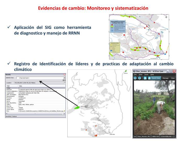 Evidencias de cambio: Monitoreo y sistematización