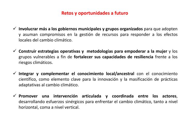 Retos y oportunidades a futuro
