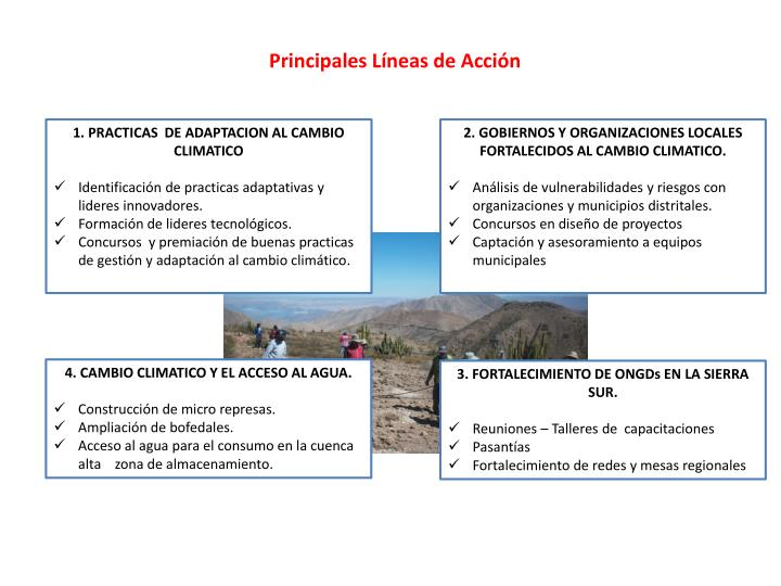 Principales Líneas de Acción
