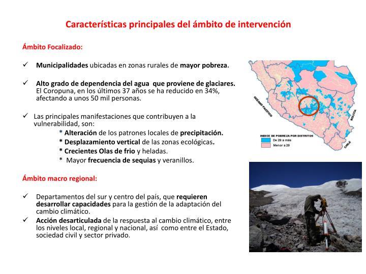 Características principales del ámbito de intervención