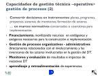 capacidades de gesti n t cnica operativa gesti n de procesos 2