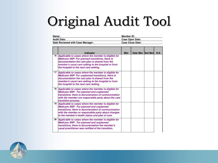 Original Audit Tool