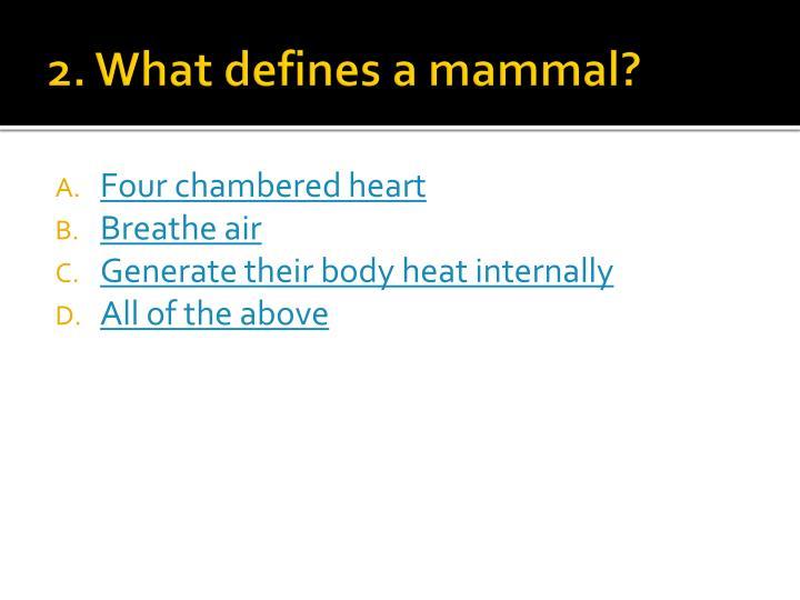 2. What defines a mammal?