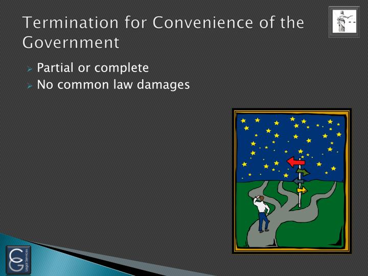 Termination for Convenience of the Government