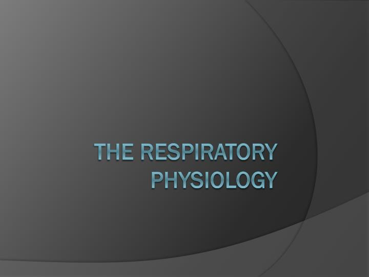 the respiratory physiology