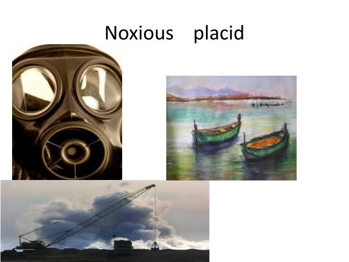 Noxious    placid
