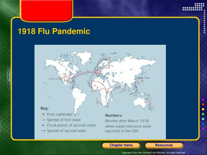 an analysis of the effects of the flu pandemic in 1918 The 1918 flu's high mortality and morbidity rates, its short incubation period, and the extremely high number of deaths it caused were some of the factors that made the spanish flu a unique event in all senses.