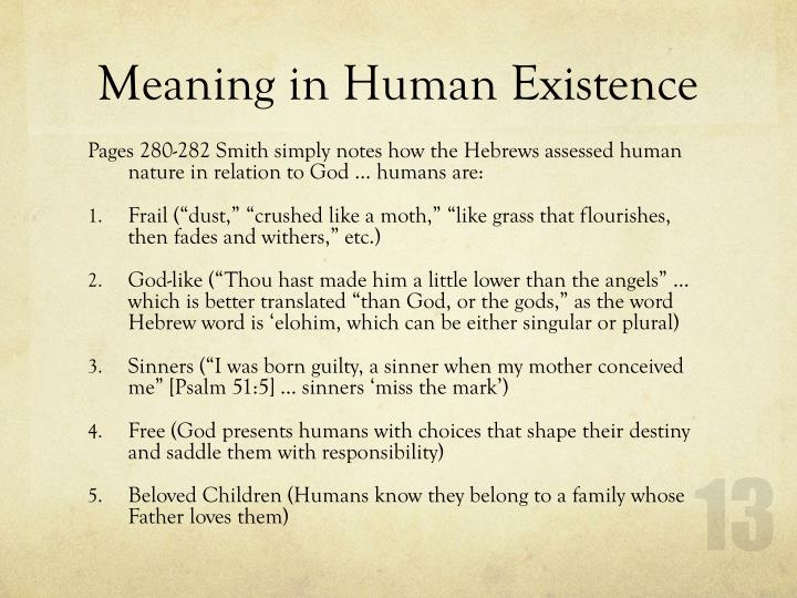 Meaning in Human Existence