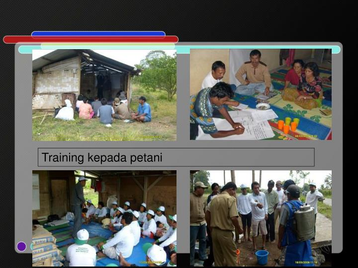 Training kepada petani