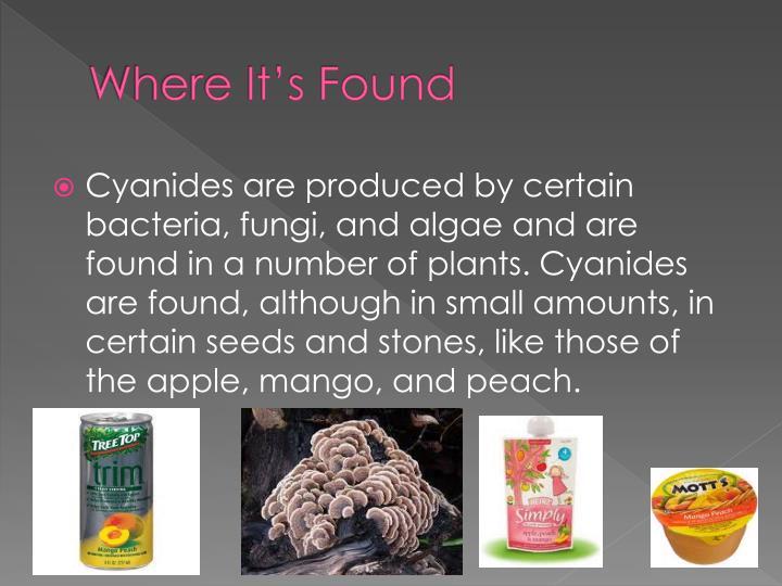 Where It's Found