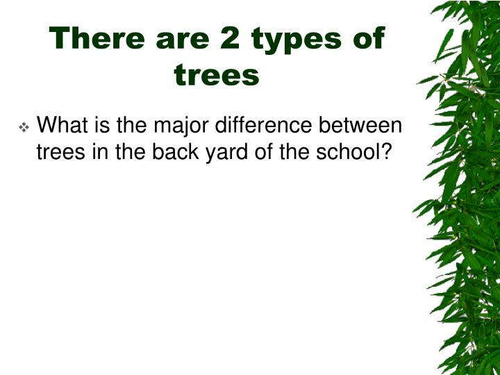 There are 2 types of trees
