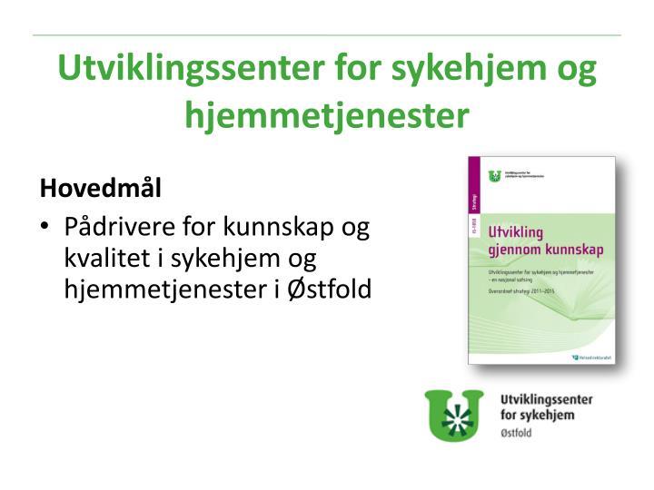 Utviklingssenter for sykehjem og hjemmetjenester