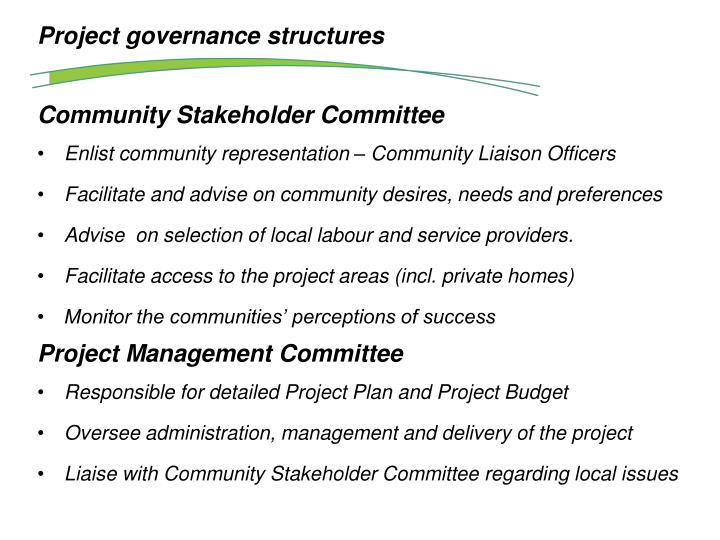Project governance structures