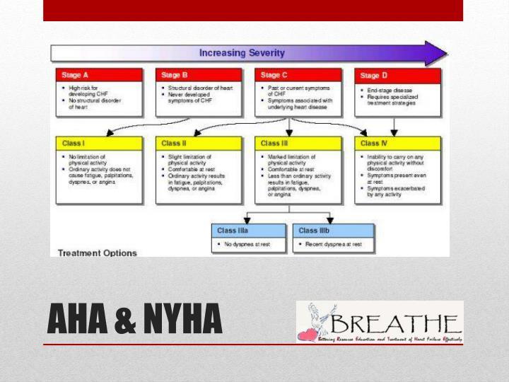 AHA & NYHA