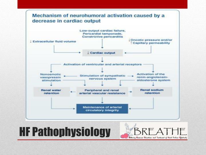 HF Pathophysiology