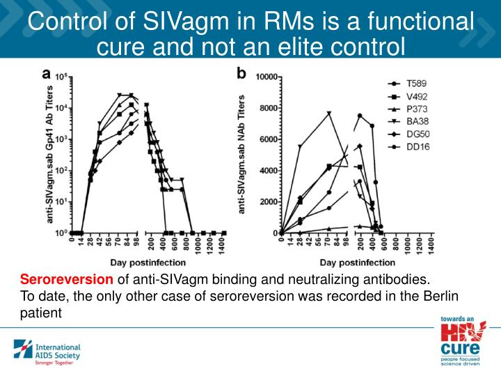 Control of SIVagm in RMs is a functional cure and not an elite control