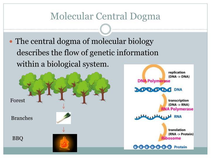 Molecular Central Dogma