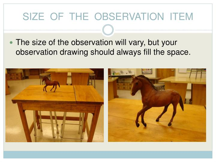 SIZE  OF  THE  OBSERVATION  ITEM