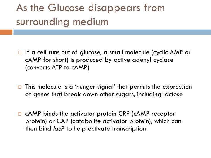 As the Glucose disappears from surrounding medium