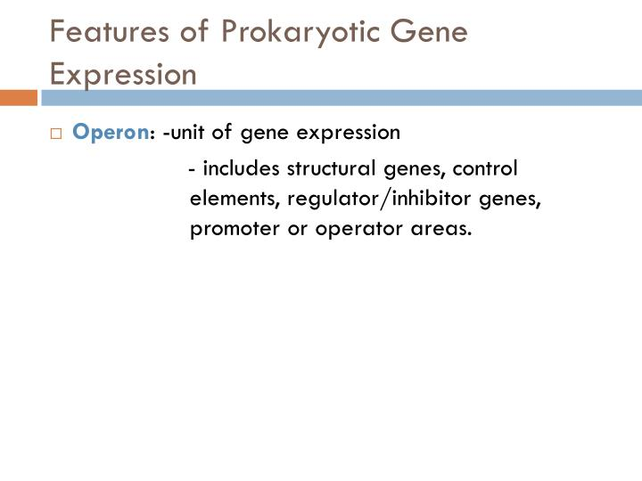 Features of Prokaryotic Gene Expression