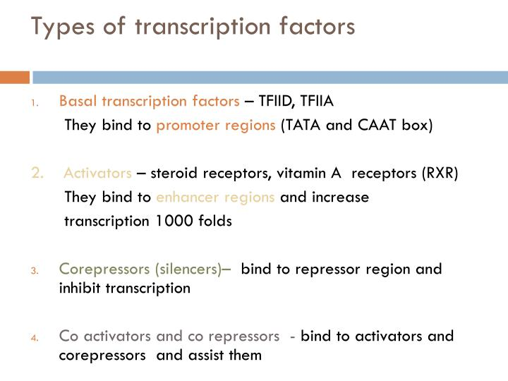 Types of transcription factors
