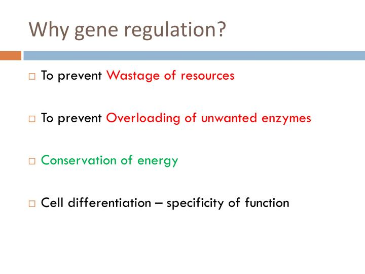 Why gene regulation?