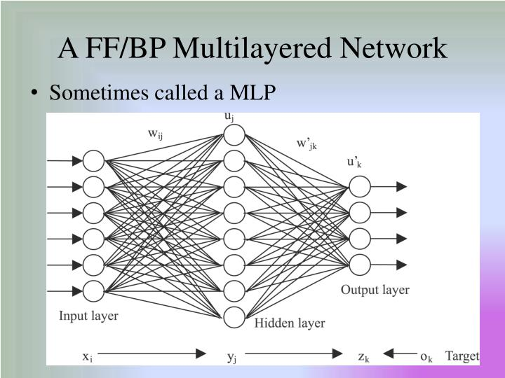 A FF/BP Multilayered Network