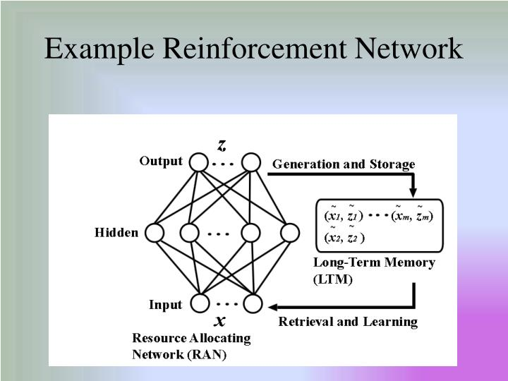 Example Reinforcement Network