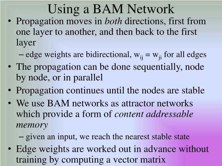 Using a BAM Network