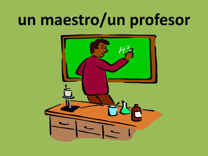 un maestro/un